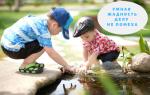 Пословицы для детей о жадности