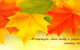 Пословицы 4 класс по русскому языку