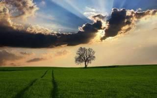 Про небо афоризм