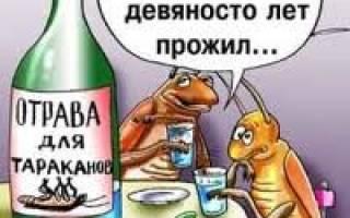 Про алкоголь пословицы